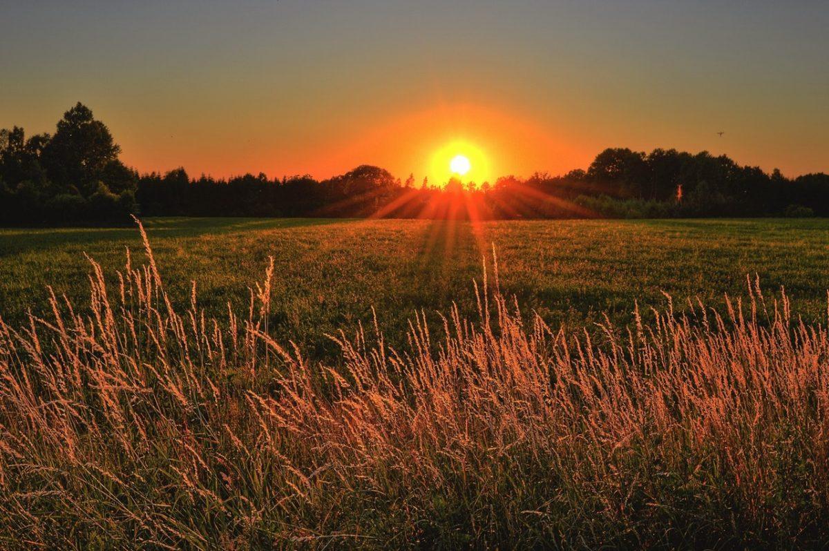 Happier Than The Morning Sun – Stevie Wonder Cover